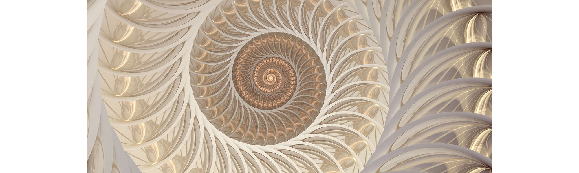 Abstract fractal spiral shell