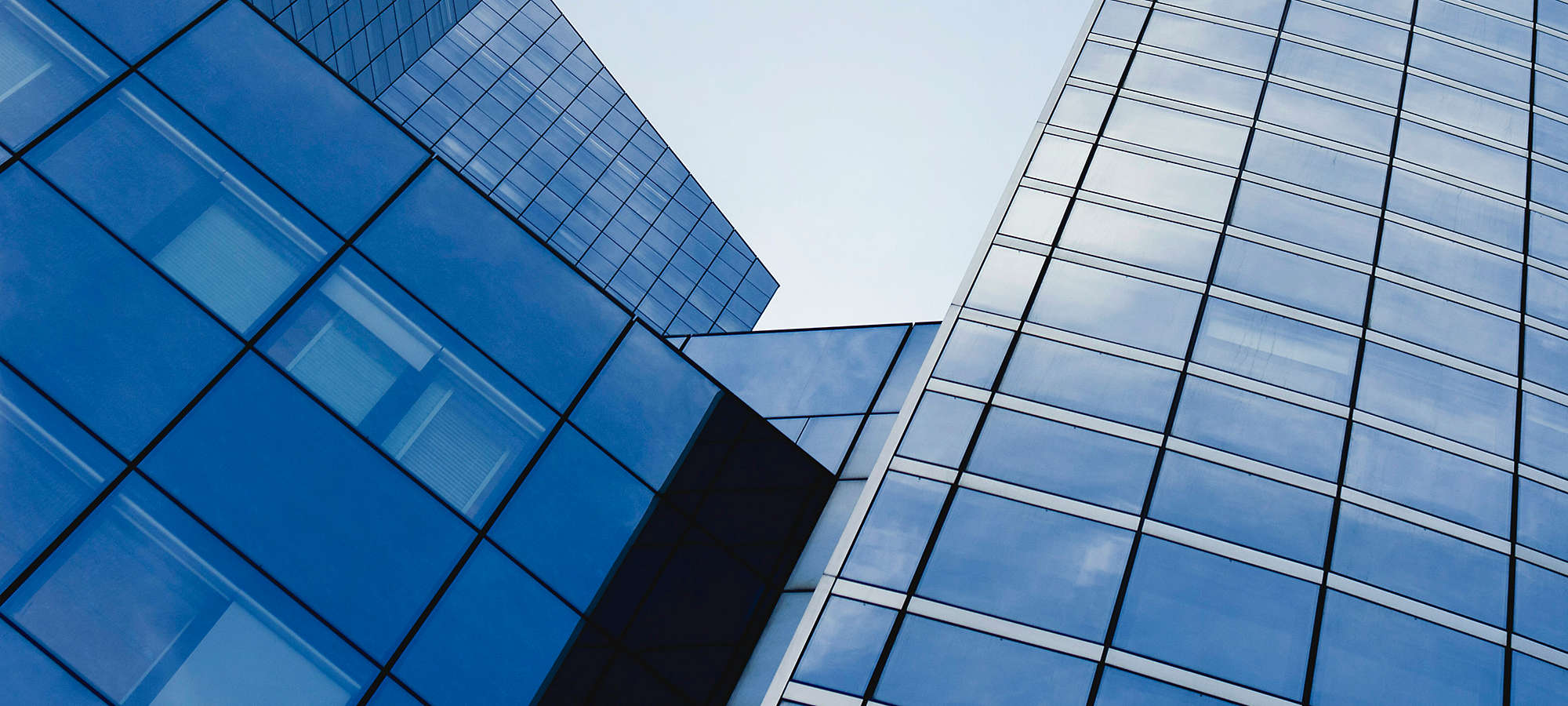 Facade of Skyscrapers Banner