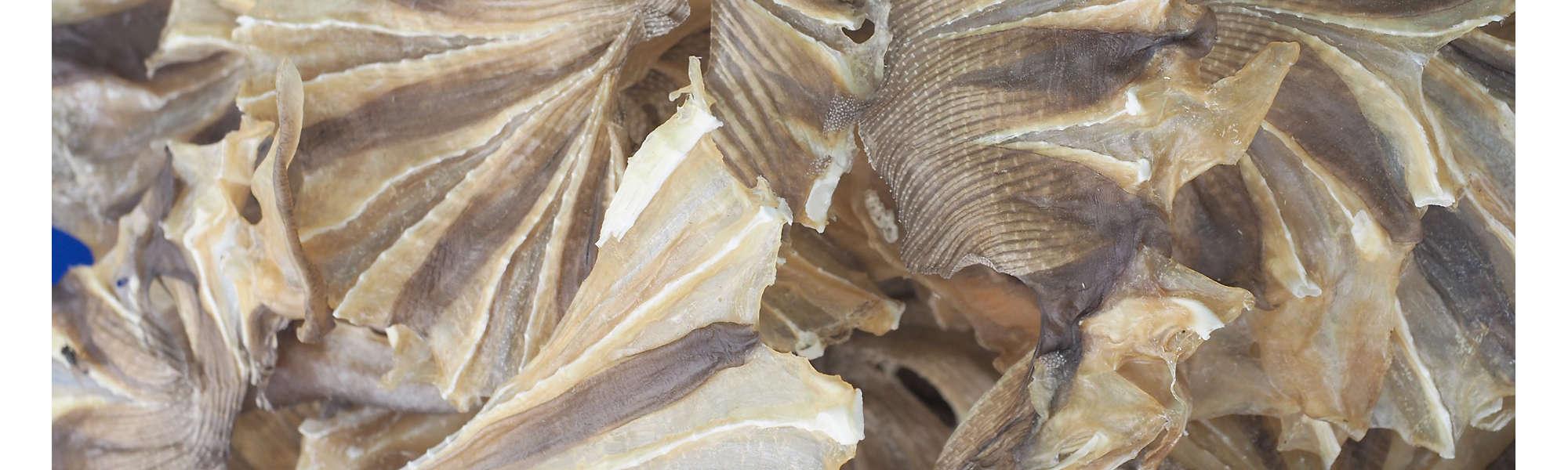 Dried fish market Thailand