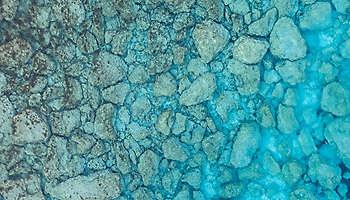 Mediterranean sea rocky coral water