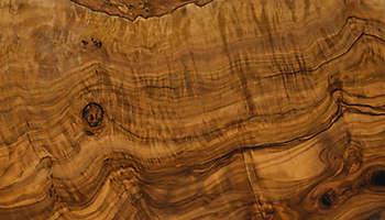 Texture olive wood closeup