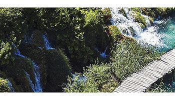small-wooden-walking-bridge-over-creek